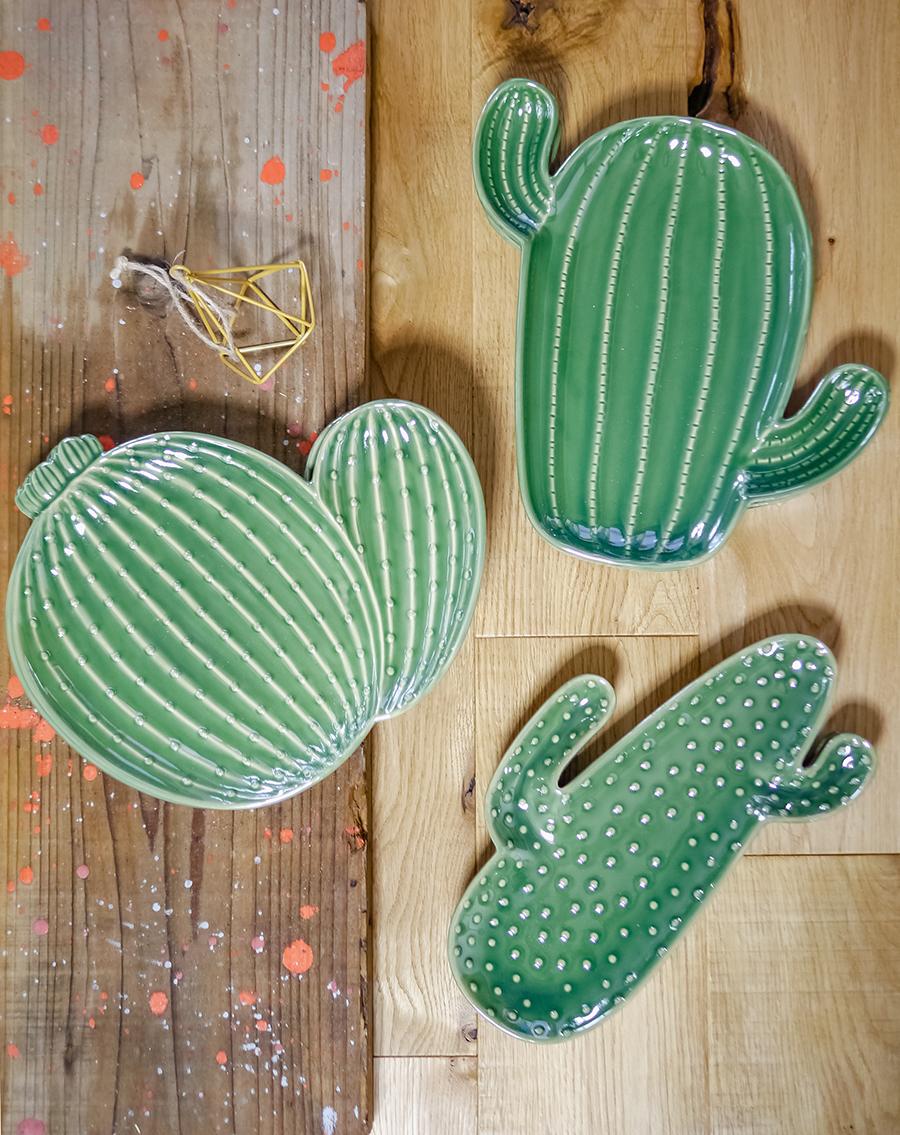 cactusplate00