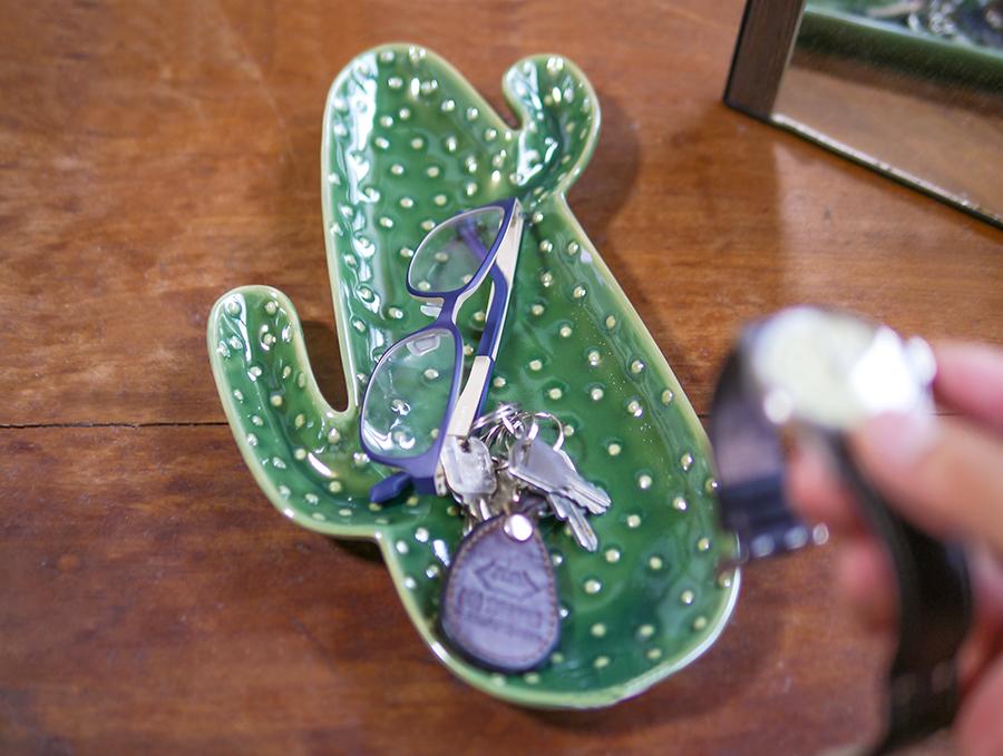 cactusplate09