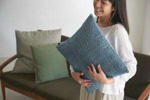 cushion_gus_000